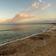 Toter Hai auf Mallorca entdeckt