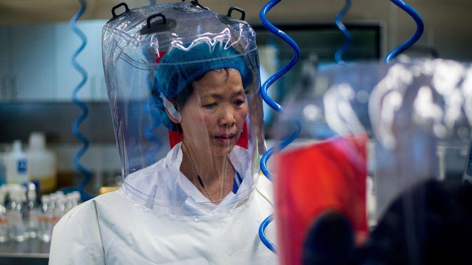 Forscherin Shi Zhengli im Labor (Archivbild)