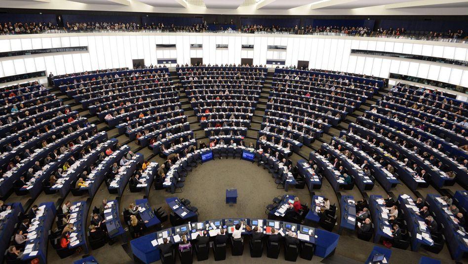 """Abgeordnete des Europaparlaments (in Straßburg): """"Schlechte Erfahrungen mit Ausstellungen sensiblen Inhalts"""""""