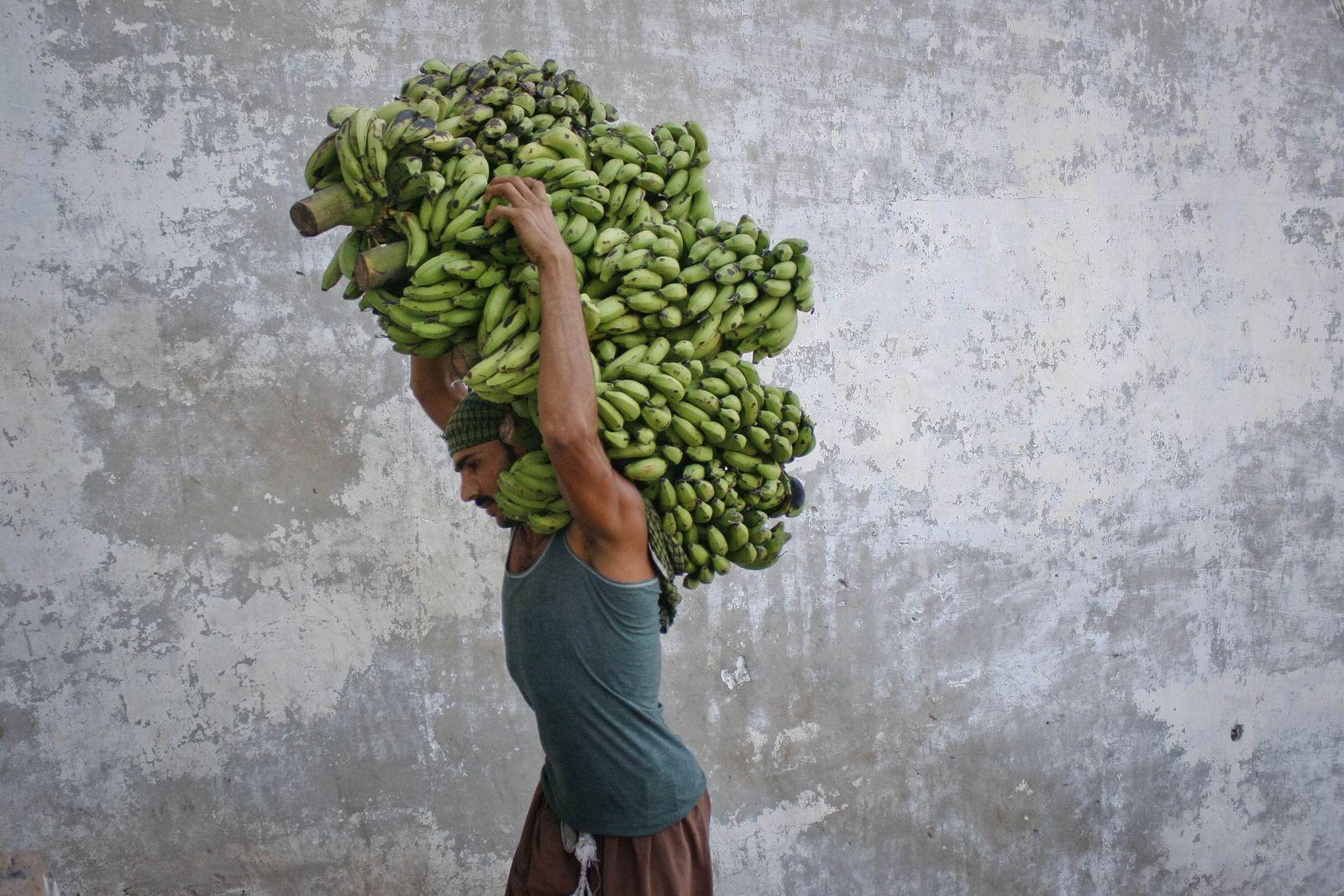 Pakistan Hausangestellte