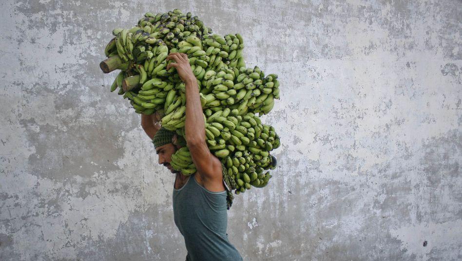 """Arbeitskraft in Pakistan: """"Nenn' mich doch bitte nicht Sir"""""""