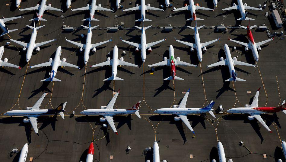 Geparkte Boeing 737 Max in Seattle (Archivbild): Diese Jets wären wegen des Flugverbots wohl auch so am Boden