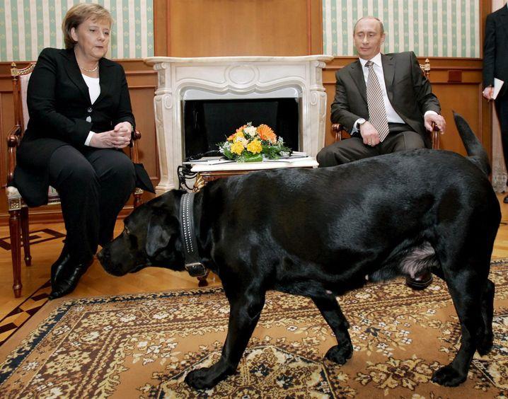 "Merkel, Putin und sein Labrador ""Koni"""