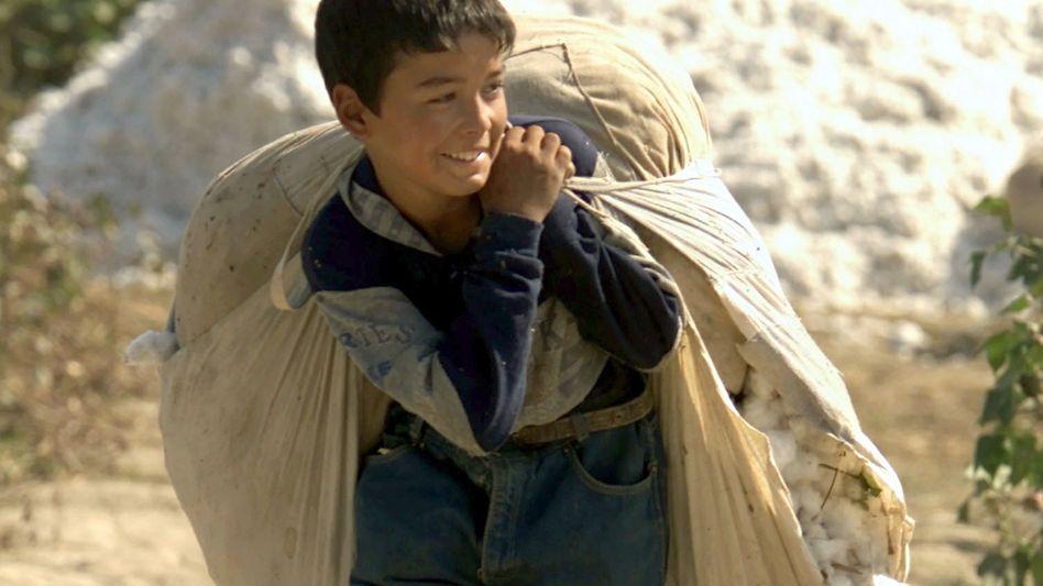 Baumwollernte in Usbekistan: Kinder zur Arbeit gezwungen