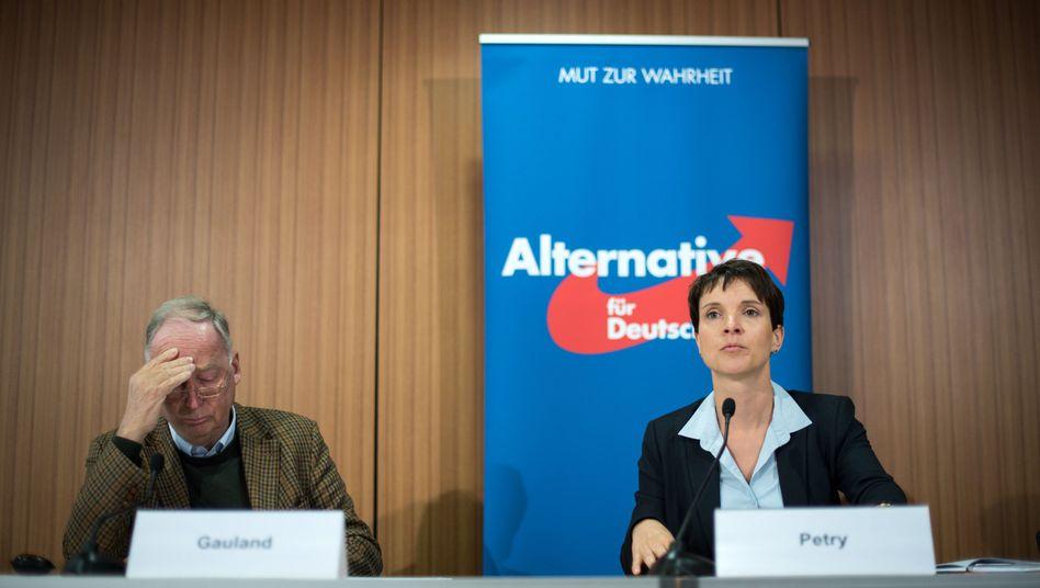 AfD-Politiker Gauland und Petry