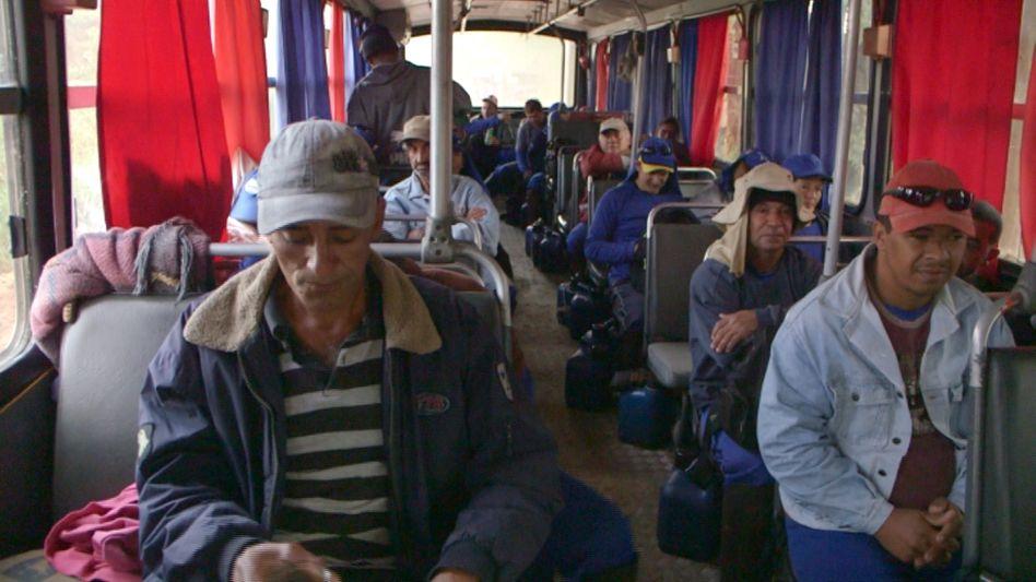 Brasilianische Pflücker auf dem Weg zur Arbeit: Wie kommt der Preis zustande?