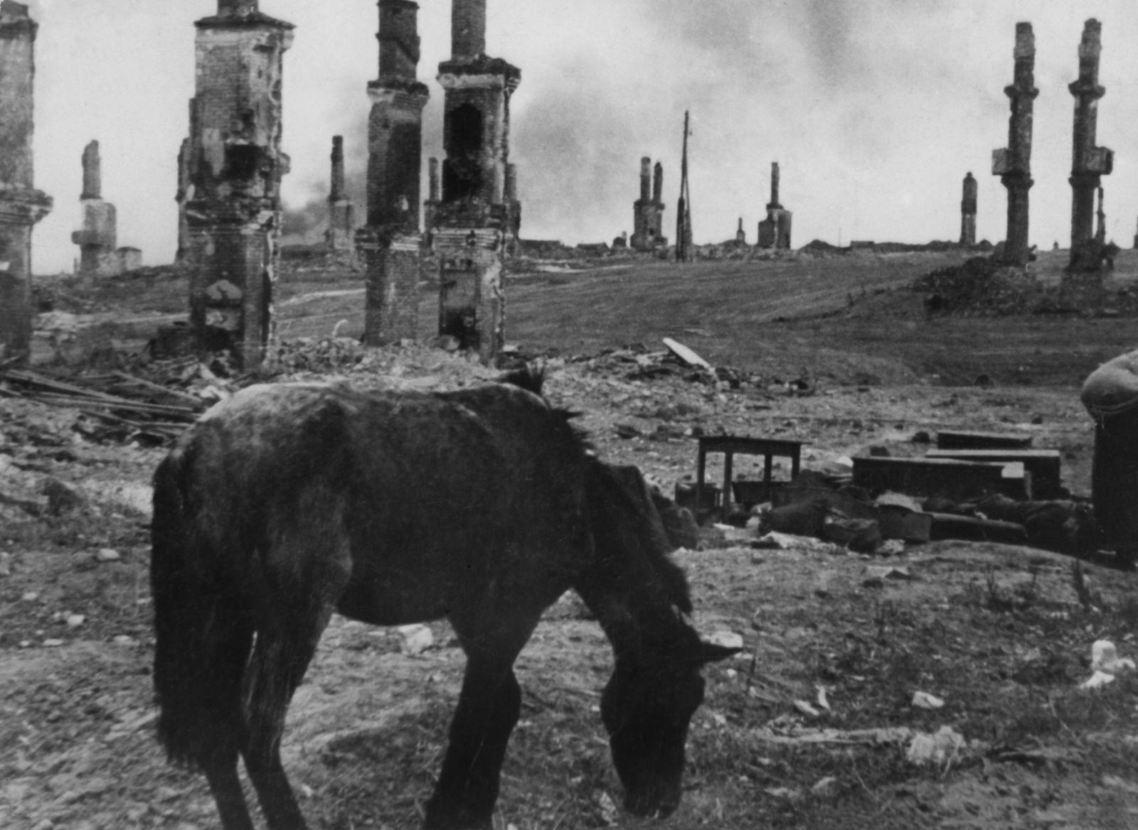 2. Weltkrieg, Sowjetunion, Kriegsschauplatz Stalingrad