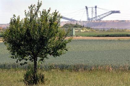 Streuobstwiese in der Nähe eines Braunkohletagebaus bei Otzenrath (Juli 2005): Mehrzahl der Biotope ist nach wie vor bedroht