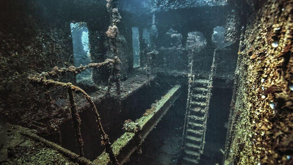 """Wracktauchen im Roten Meer: Sonnenstrahl in der """"Turkia"""""""