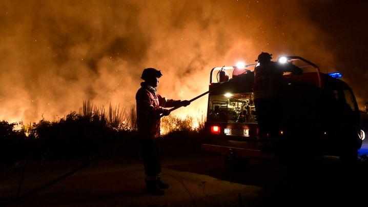 Waldbrände in Portugal: Rauch und Flammen über Funchal