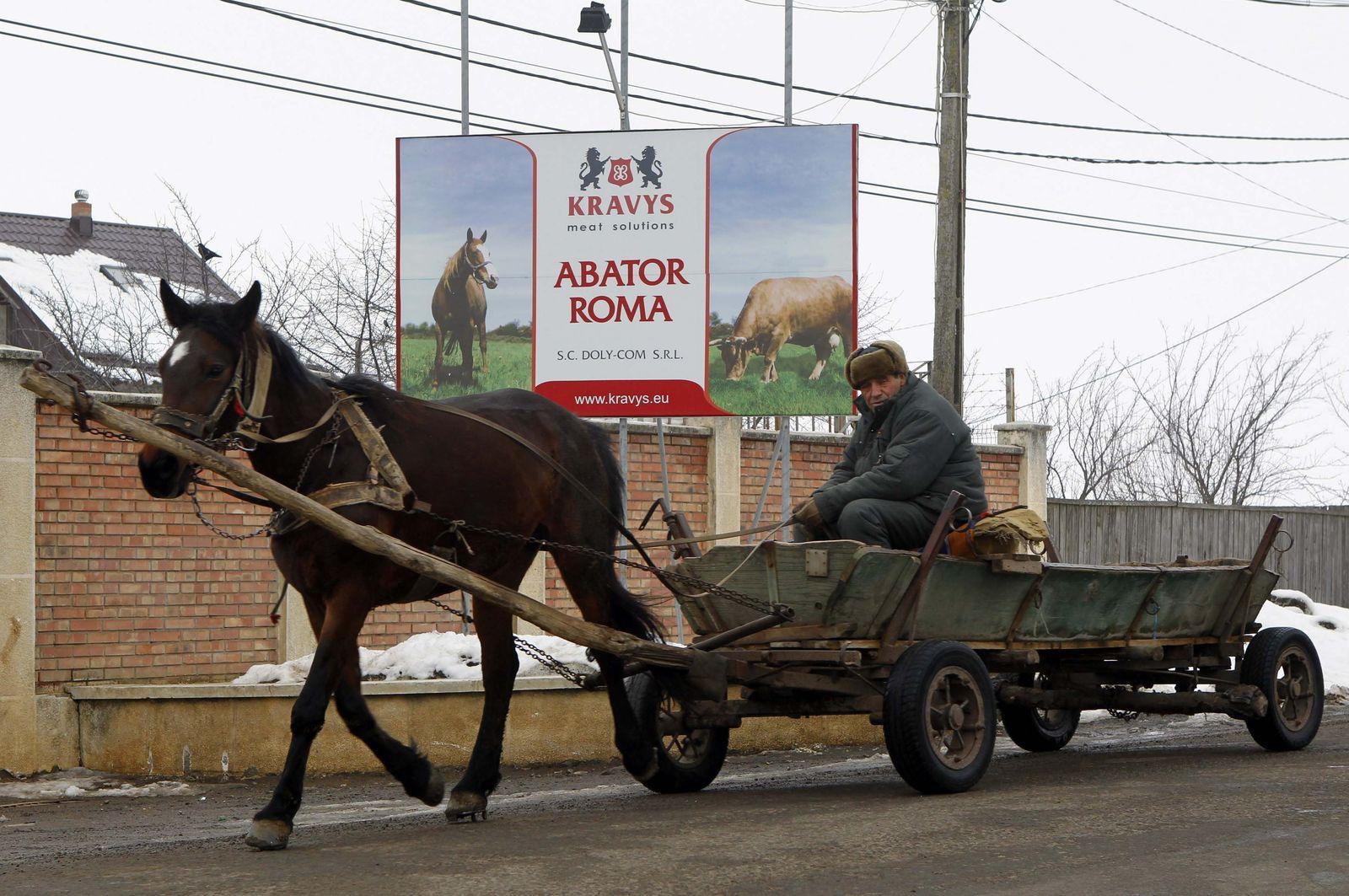 HORSEMEAT-ROMANIA/