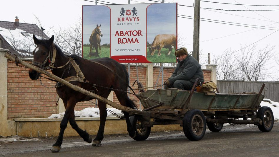 A man rides his horse-driven cart in front of the Doly-Com meat plant in Romania.