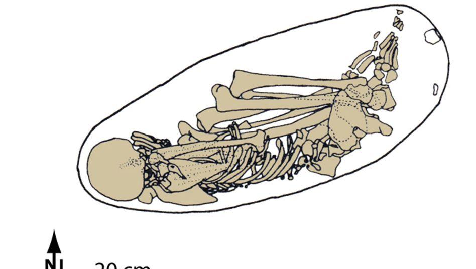 Zeichnung des Kostenki-Skeletts: Knochen eines Mannes, der vor etwa 37.000 Jahren im europäischen Teil des heutigen Russlands lebte