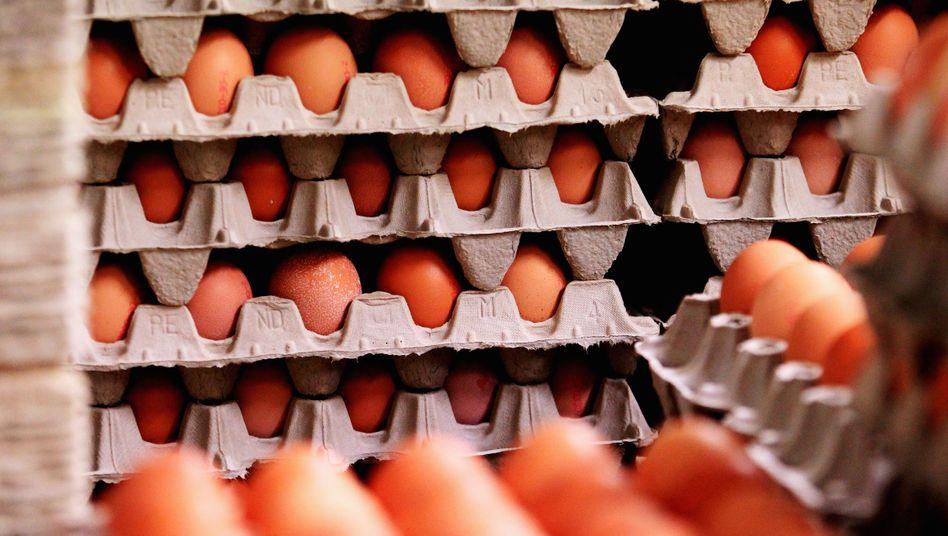 Eierchargen: Produkte von gesperrten Betrieben gelangten in den Handel