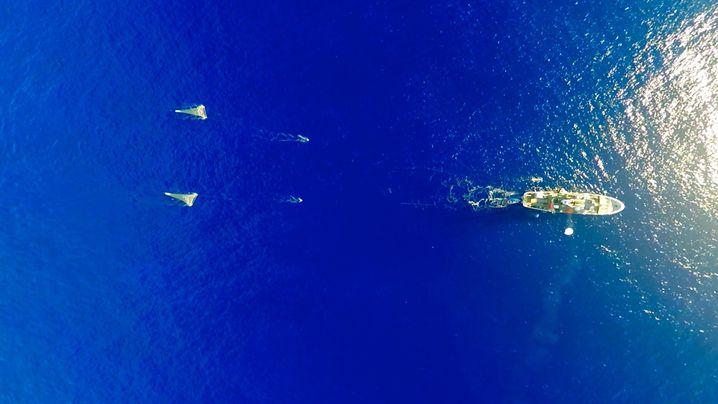 Umweltverschmutzung: Plastik im Meer