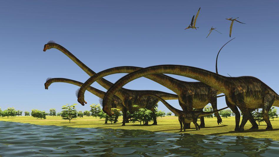 Barosaurus-Herde (künstlerische Darstellung)