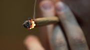 Polizeigewerkschaften warnen vor Cannabis-Legalisierung