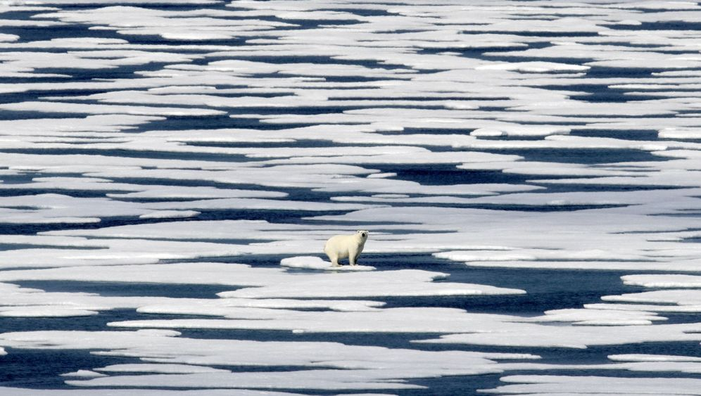 Arktis: Meer voll Müll