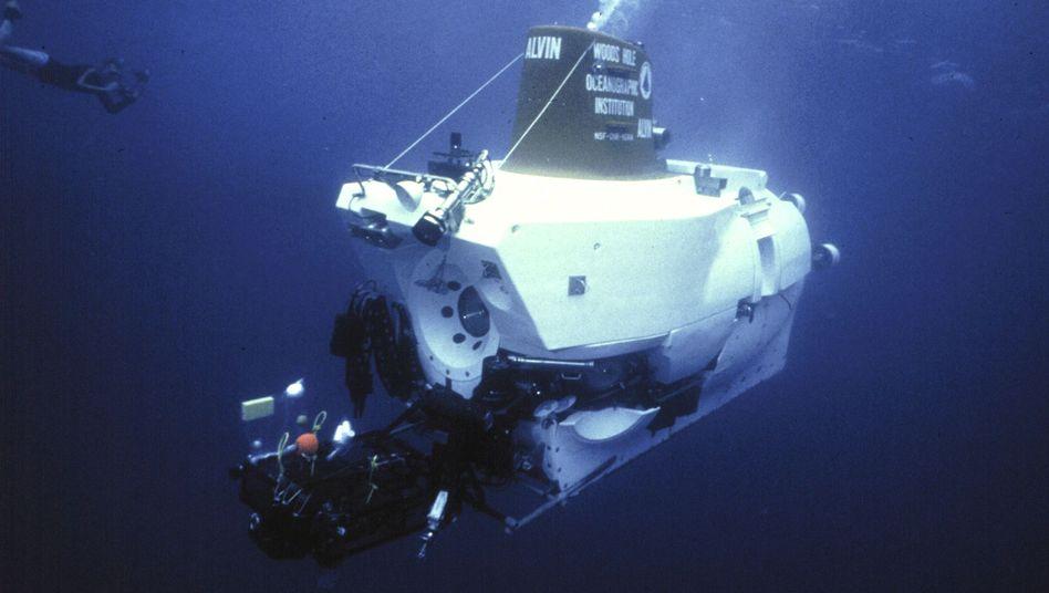 """""""Alvin"""": Das bekannte Forschungs-U-Boot trug Schnecken in fremde Gewässer"""