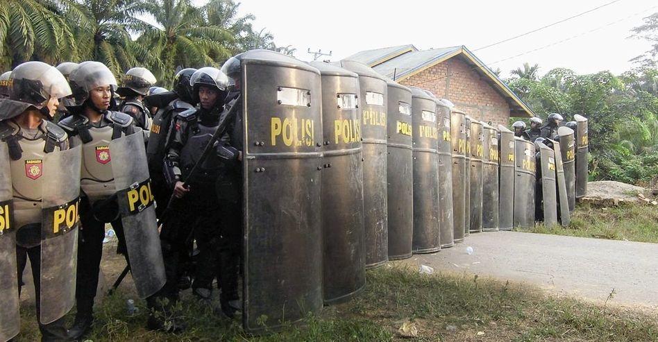 Polizeibrigade auf einer Plantage