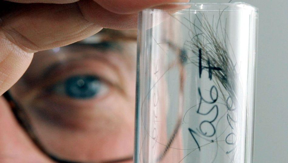 Chemiker mit Haarprobe (Archivbild)