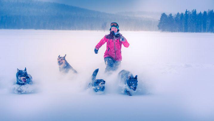 """""""Die Hunde sind der Mittelpunkt unseres Lebens"""""""
