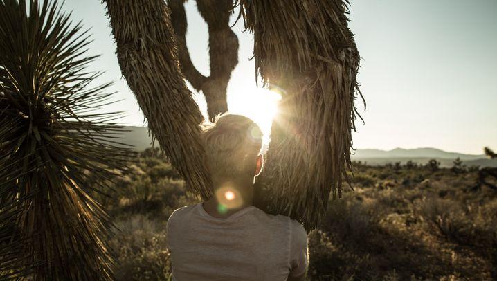 Von Marokko bis Peru: Wüsten der Welt