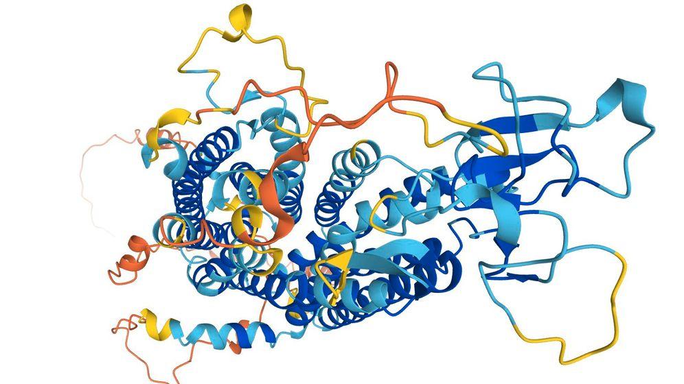 Von AlphaFold vorhergesagte Proteinstrukturen: Schleusen oder Pumpen, Schrauben, Haken oder Ösen