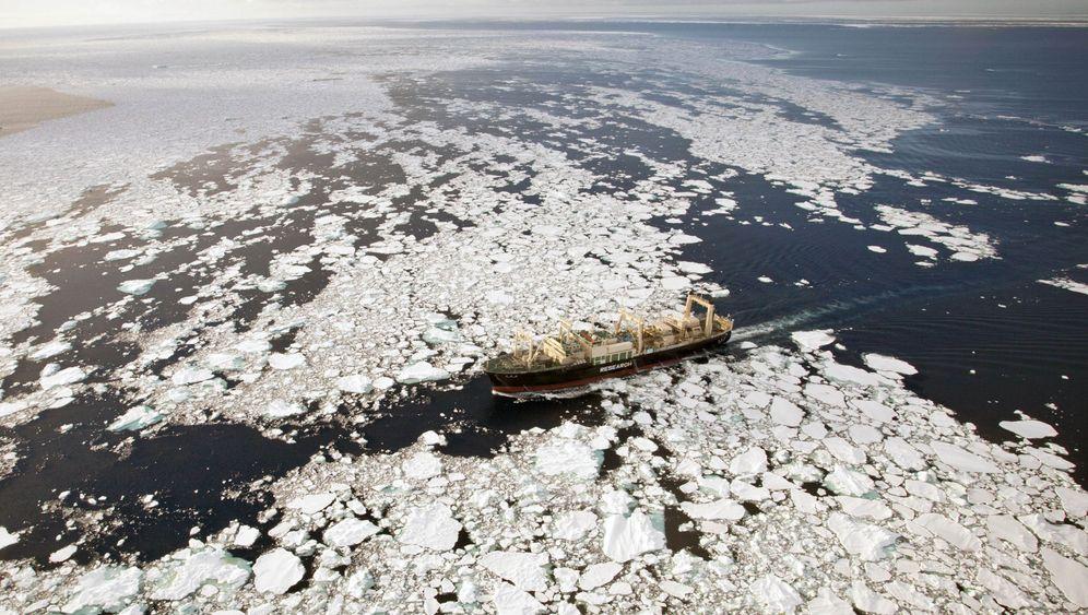 "Umstrittener Walfang: Japans blutige ""Wissenschaft"""