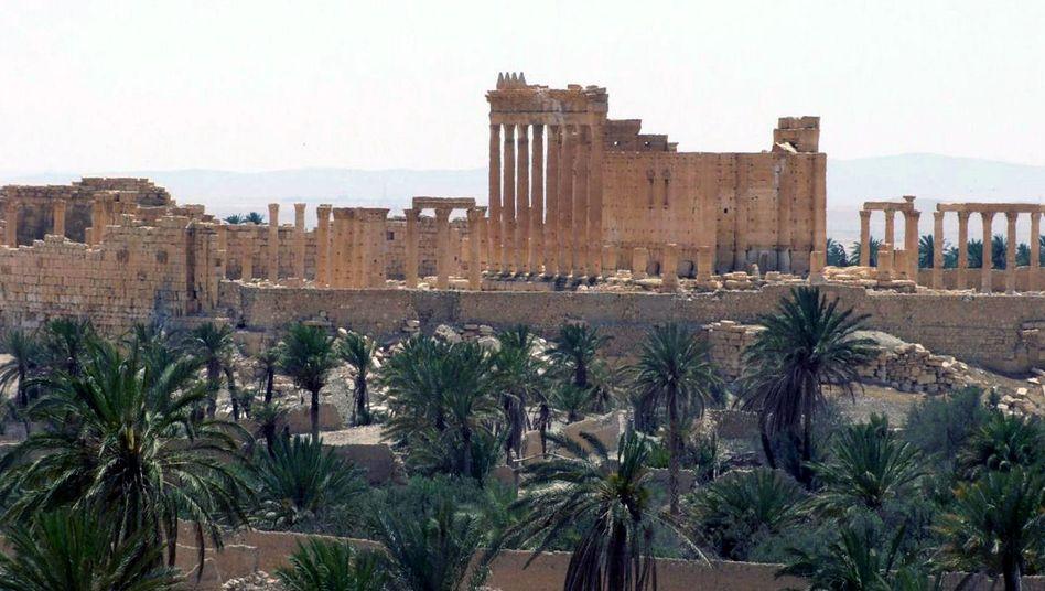 Welterbestätte in Syrien: IS-Terroristen sprengen Palmyras größten Tempel