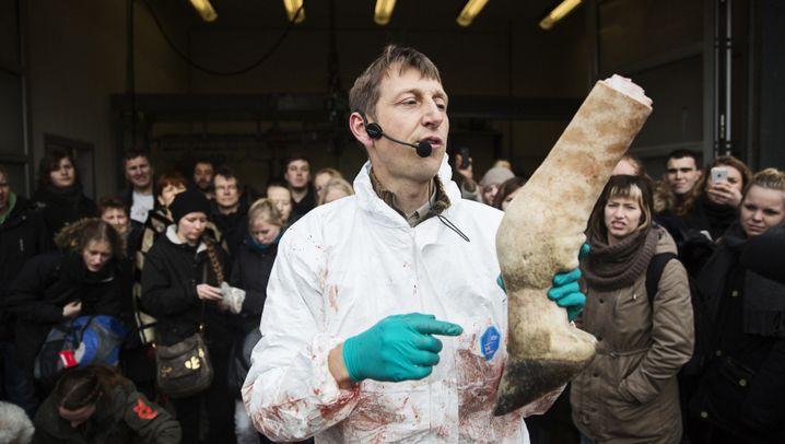 """Proteststurm wegen toter Giraffe: """"Unnötig grausamer und barbarischer Akt"""""""
