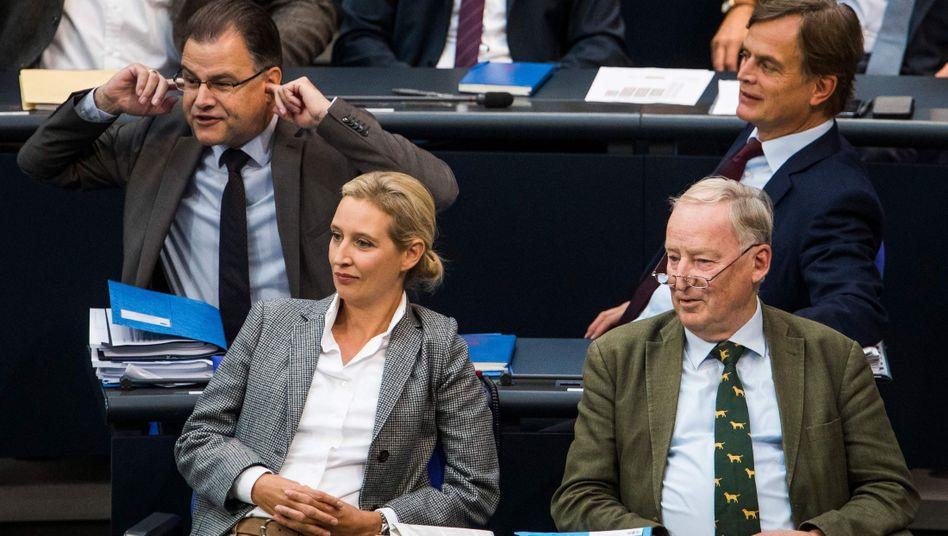 AfD-Mitglieder im Bundestag