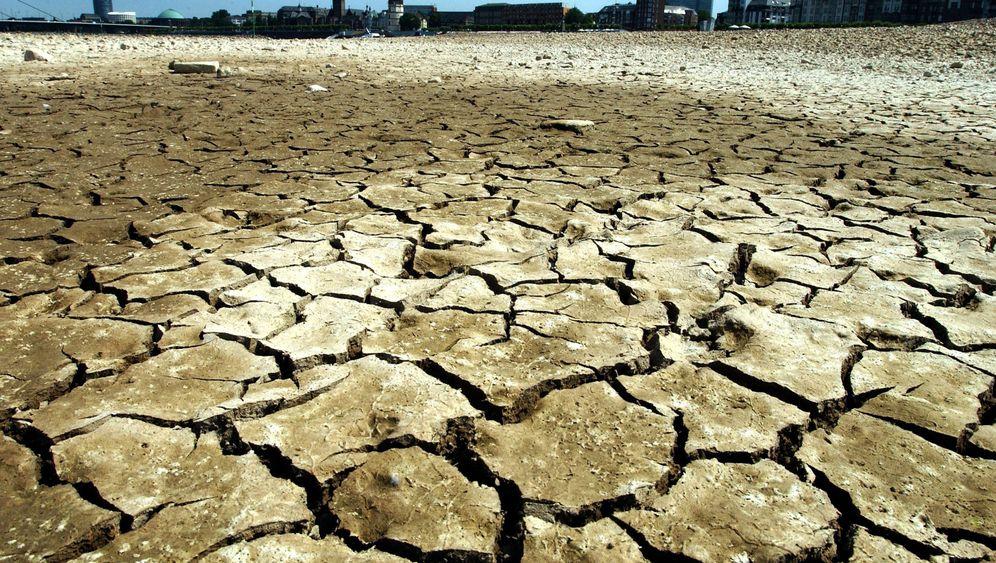 Naturkatastrophe in Europa: Im Bann der Hitze