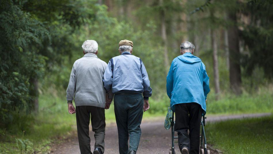 Rentner im Landkreis Jerichower Land: Die Hälfte der Betroffenen ist älter als 65