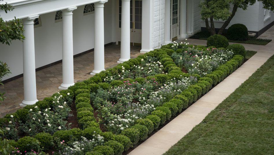 Der Rosengarten vor dem Weißen Haus im August 2020: Das kann man langweilig finden