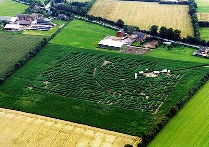 Thema Sonnensystem: Wenn der Mais reif ist, können die Besucher sich verirren