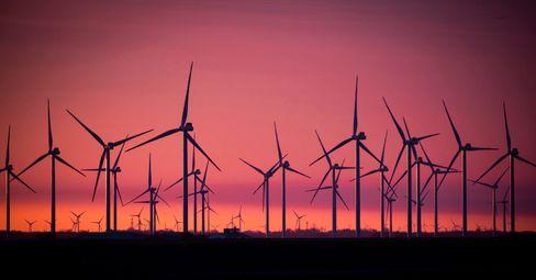 Windräder in Schleswig-Holstein: »Die AfD positioniert sich im Wahlkampf beispielsweise als entschiedene Kraft gegen den Windkraft-Ausbau und punktet damit«