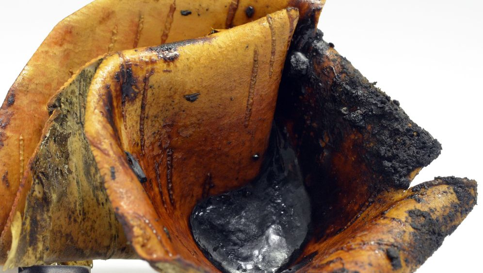 Birkenpech: In der ersten Klebstoff-Fabrik