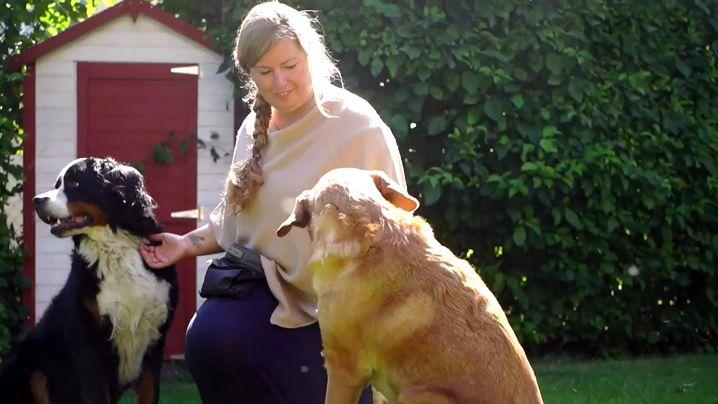 Immer wieder direkte Vergleiche zwischen Kind und Hund: Trainerin Verebes etabliert für ein Kind ein Umorientierungssignal