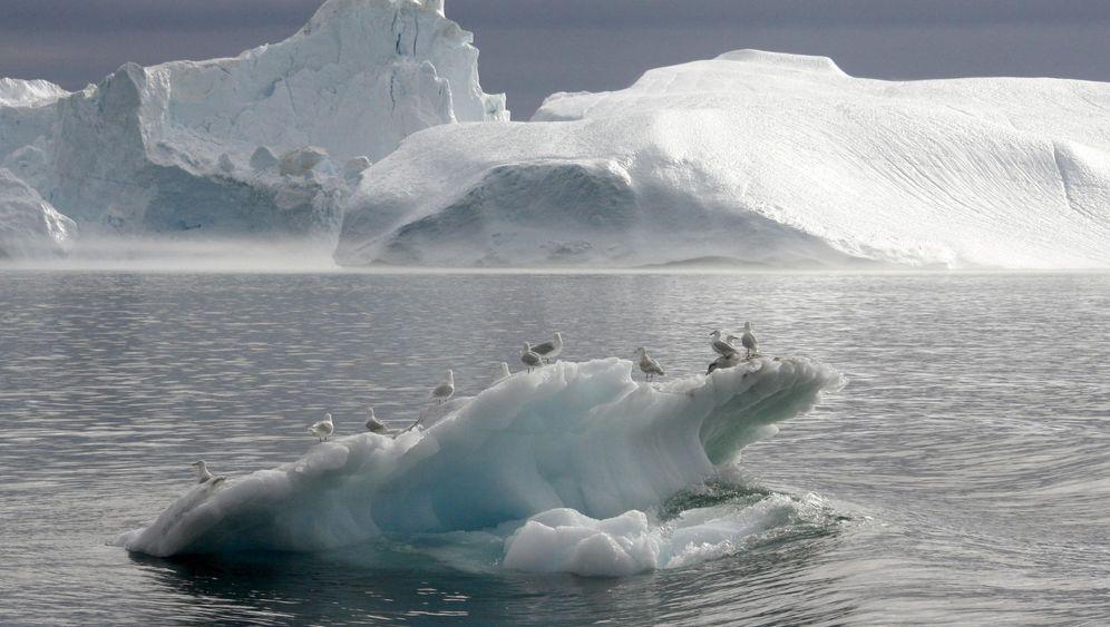 Photo Gallery: Water World