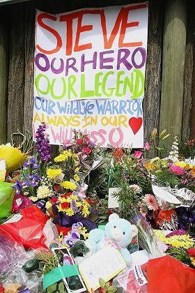 """Trauer im """"Australia Zoo"""" in Beerwah: Irwins Fans haben Blumen mitgebracht"""