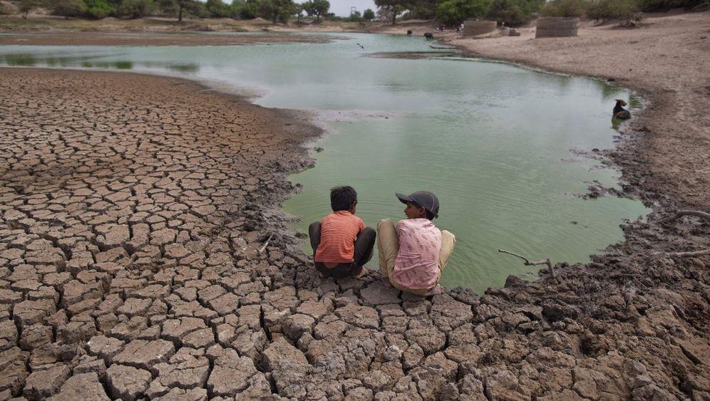 Dürre in USA und Indien: Angst vor neuer Nahrungskrise