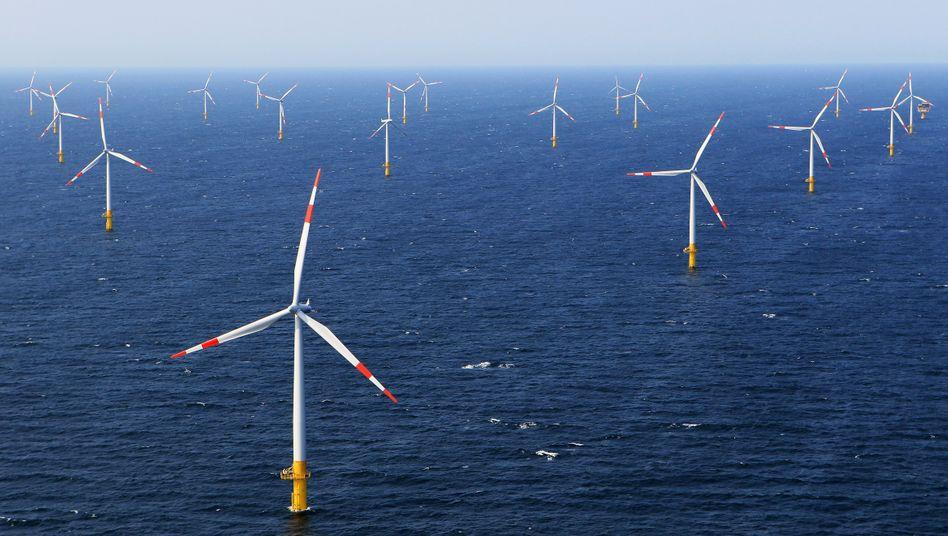 Offshore-Windpark (Symbolbild): Windkraftanlagen mit einer Kapazität von bis zu zehn Gigawatt sollen für das Projekt entstehen