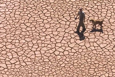 Drought: A dry cracked reservoir bed in Alcora, Spain