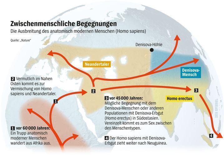 Ausbreitung Homo sapiens: Kontakte zum Neandertaler