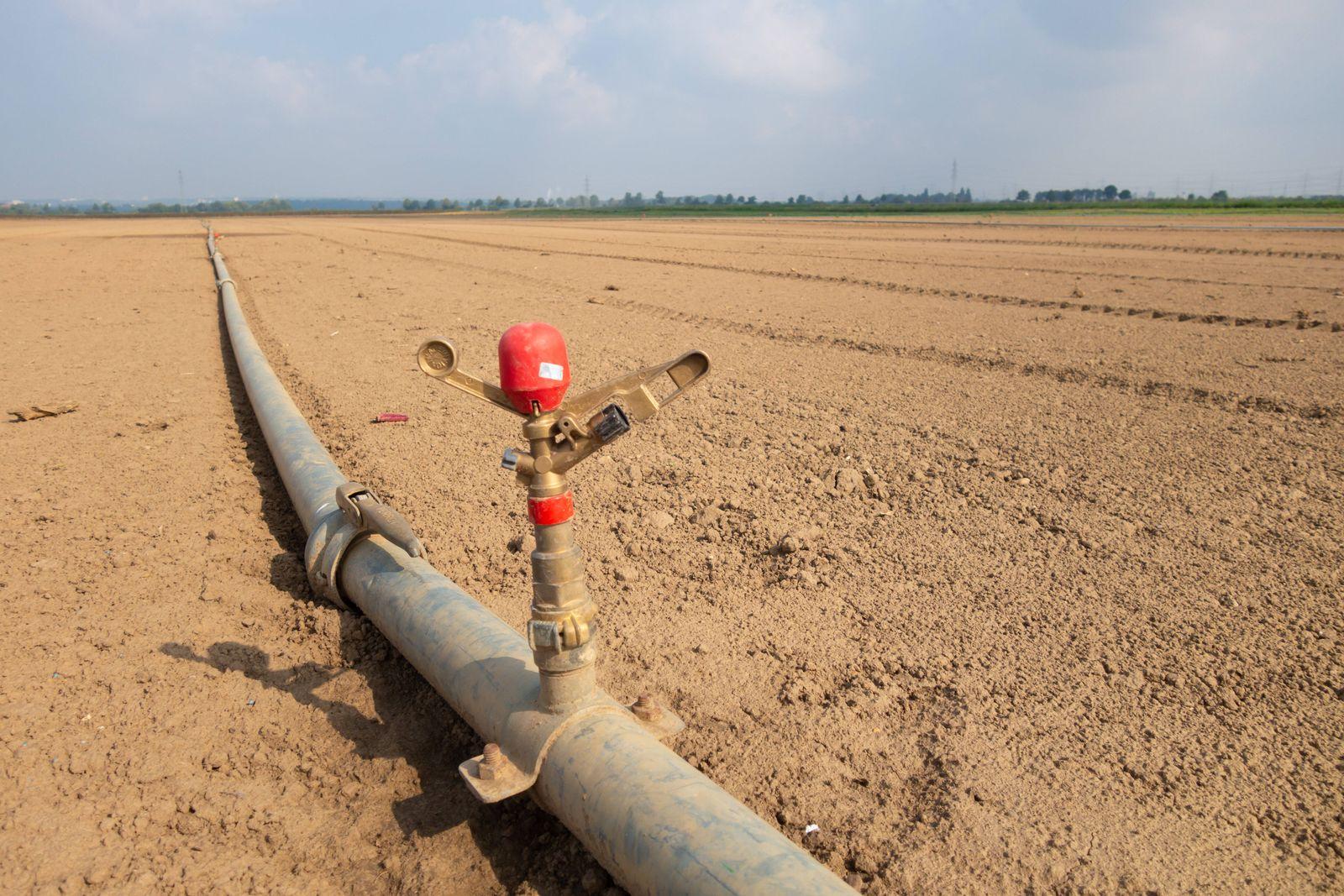 Bewässerungssystem auf einem Feld bei Bornheim im Rhein-Sieg Kreis. Trockener Acker bei Hitzewelle *** Irrigation syste