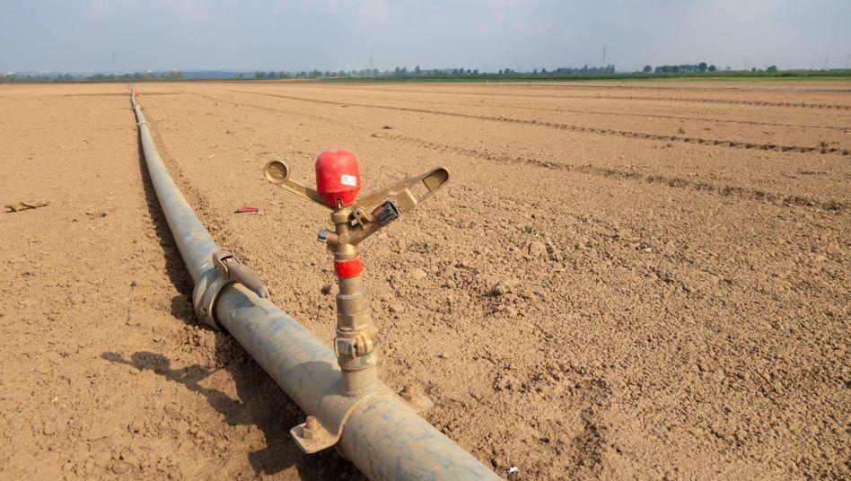 Bewässerungssystem auf einem Feld bei Bornheim im Rhein-Sieg-Kreis: Es bleibt eben nicht ohne Folgen, wenn jedes Jahr weltweit 37 Milliarden Tonnen CO2 aus Industrie, Verkehr und Heizungen freigelassen werden