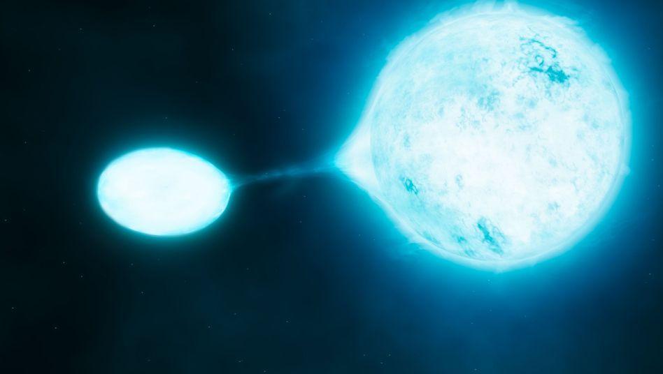 Gefräßiger Sternkoloss: Ein sogenannter O-Stern saugt seinen Begleitstern aus