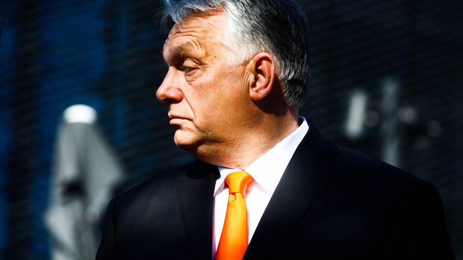 Viktor Orbán: »Die wollen uns sagen, wie wir unser Leben zu leben und uns zu benehmen haben«