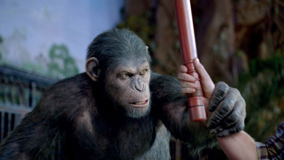 """""""Planet der Affen""""-Prequel: Haarige Humanisten"""